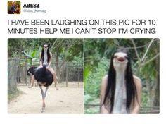 hahahahahhahahahahaha