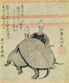 «Tortues». La leçon de dessin d'Hokusai. Au Grand Palais 2014/2015 @LiberationFR