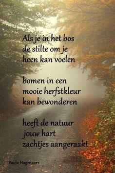 Natuur/herfst
