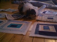 when cats and quilt blocks combine.  <3wendy