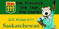 Go Riders Saskatchewan's Team ! Go Rider, Saskatchewan Roughriders, Rough Riders, One Team, Amazing Quotes, Sports, Pride, Canada, Football