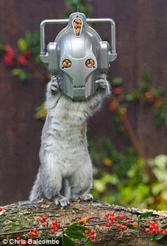 Meet Doctor Who's Nuttiest Enemy Yet... Cybersquirrel!