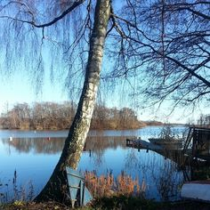 My own picture from Sweden Södermanland
