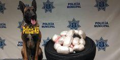 "Localizan droga abandonada en ""ready lane"""