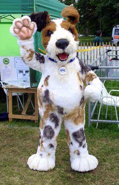 Scruffts #dog #mascot #costume