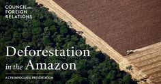 !!!!!!!!!!!!!!!!!!!!!!!!!!!   CFR Interactive...  !!!!!!!!    Brazil's Amazon has lost nearly a fifth of its forest in the past fifty years. What causes deforestation, and what's at stake? Explore this guide to find out.