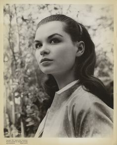 Susan Harrison (US Actress) Famous Photos, Old Photos, Us Actress, People Poses, Jane Seymour, Archetypes, Embedded Image Permalink, American Actress, Behind The Scenes