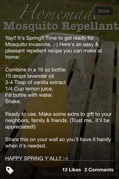 Homemade mosquito repellant by faiffann This really does work - and it smells wonderful! Herbal Remedies, Home Remedies, Natural Remedies, Peppermint Plants, Peppermint Oil, Mosquito Spray, Cleaners Homemade, Insect Repellent, Natural Health