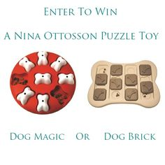 Giveaway on www.dailydogtag.com  Win a Dog Magic or Dog Brick puzzle toy for dogs.
