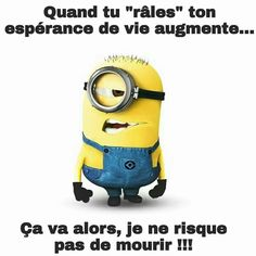 Minions, Kevin Richardson, Funny Quotes, Memes, Photos, Funny Stuff, Bullshit, Funny Laughter Quotes, Sayings And Quotes