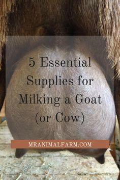 List of hand milking supplies.
