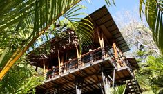 Insight: This New #Yoga #Retreat in Nicoya Promises a Reconnection with Nature's Tranquility