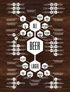 Beer Diagram | Every wonder the difference between an Ale and a Lager?