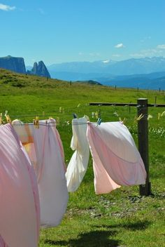 laundry drying in the summer breeze... sigh... I've always wanted a clothes line.  I actually LIKE hanging clothes outside to dry in the sun.
