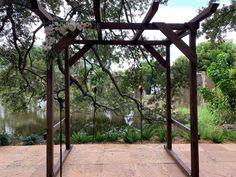 Wedding Ceremony, Arch, Outdoor Structures, Sculpture, Garden, Beautiful, Bow, Garten, Gardening