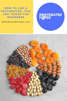 If you love dehydrated food, you don't have to buy it at the store. It's simple to learn how to use a food dehydrator at home. Check out these tips and tricks for beginners to get started! #rawfood #fooddehydration #fooddehydrator #howto #dehydratedfood Methods Of Food Preservation, Dehydrated Food, Dehydrator Recipes, Beef Jerky, Healthy Snacks For Kids, Raw Food Recipes, Fruits And Vegetables, A Food, Canning
