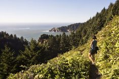 In 2021, Take These 12 Incredible Oregon Hikes, One For Each Month Of The Year Oregon Trail, Oregon Coast, Oregon Hiking, Crater Lake National Park, National Parks, Places To Travel, Places To See, Trillium Lake, River Trail