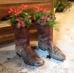 Old boots as a planter! Old Boots, Great Life, Stars At Night, Cowboy And Cowgirl, Garden Ornaments, Cowgirls, Yard Art, Bird Feeders, Container Gardening