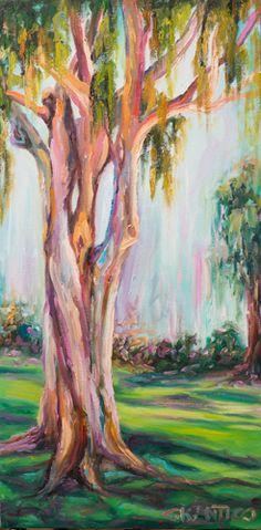 1000 images about rainbow eucalyptus on pinterest