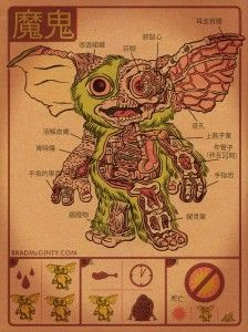 a cute anatomical poster of the Mogwai by Brad McGinty