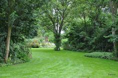 Buytengewoon villatuinen sfeervolle tuin met zwembad en