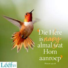 Psalm 145 18, Hart, Afrikaans, Positive Quotes, Encouragement, Christian, Beauty, Quotes Positive, Beauty Illustration