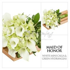 white-calla-green-hydrangea-i-4.jpg (1200×1200)