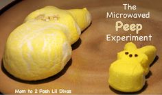 The Microwaved Peep Experiment - What happens when you microwave a marshmallow chick? Try this fun kid science experiment!