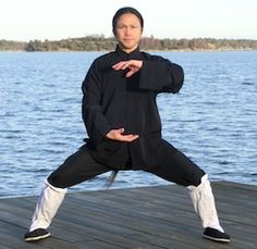 Master Zhongxian Wu  www.masterwu.net