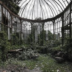 How to make the small greenhouse? There are some tempting seven basic steps to make the small greenhouse to beautify your garden. Abandoned Mansion For Sale, Abandoned Mansions, Abandoned Houses, Abandoned Places, Abandoned Library, Abandoned Detroit, Abandoned Warehouse, Abandoned Vehicles, Abandoned Train