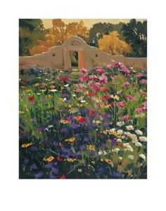 New Mexico Magazine Store - Adobe Compound Garden, $30.00 (http://newmexico.mybigcommerce.com/adobe-compound-garden/)