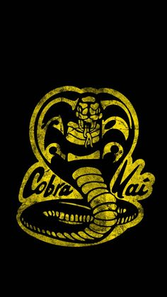 Cobra Kai Wallpaper, Snake Wallpaper, Asian Wallpaper, The Karate Kid 1984, Karate Kid Cobra Kai, Cartoon Network, Kai Arts, Cobra Kai Dojo, Miguel Diaz