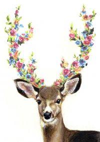 Deer by Hiroshi Kato