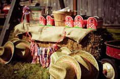 Cute country fair birthday party ideas
