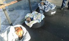 They even provided beds and blankets.