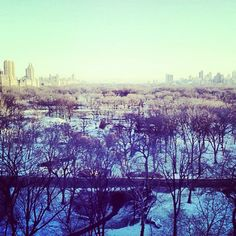 A snowy view of Central Park from the City House