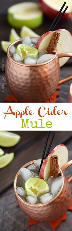 This Apple Cider Mule has all the flavors of fall, with a kick of vodka for those cool nights | COPYRIGHT ©️️ 2017 COOKING WITH CURLS