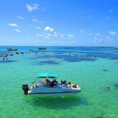 Maragogi e seus incríveis barcos voadores Foto   maceioalagoas. Praias De  Alagoas cf8043c14cdcb