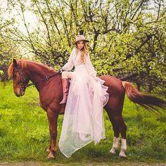 Instagram media by dressageland - Фото с красивыми спортивными лошадьми на конноспортивной базе…