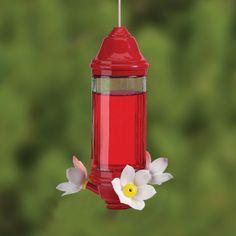 hummingbird feeders | Hummingbird Feeders