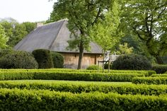 House E A by AID Architecten fotografie Low Country, Country Style, Landscape Architecture, Landscape Design, Boxwood Garden, Hagen, Homesteads, Green Garden, Topiary