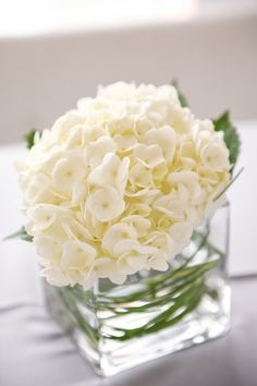 Sweet and simple all-white hydrangea centerpieces in low glass vases {Monique Hessler Photography}