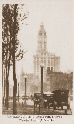 POSTCARD – CHICAGO – WRIGLEY BUILDING – FROM THE NORTH – NOTE STREET LIGHTS – 1920s