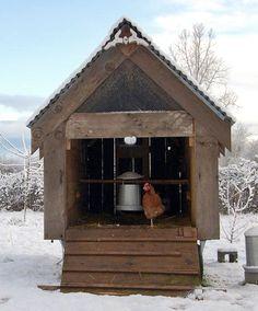 Winter hen house