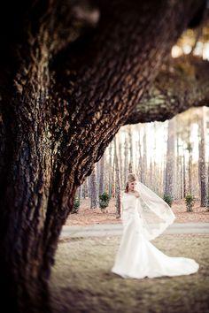 more bridal portrait inspiration <3
