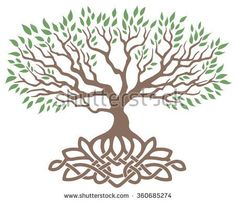 Find Vector Ornament Decorative Celtic Tree Life stock images in HD and millions of other royalty-free stock photos, illustrations and vectors in the Shutterstock collection. Thousands of new, high-quality pictures added every day. Tree Of Life Images, Tree Images, Tatoo Sakura, Celtic Tree Of Life, Illustrations, Celtic Designs, Native Art, Vector Art, Body Art