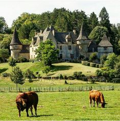 Chateau de la gande filolie - montignac-24 Le Mans France, Beau Site, Dordogne, Grand Homes, Chateaus, French Chateau, Old Buildings, Estate Homes, Country Life