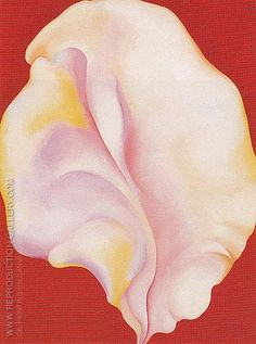 Shell on Red 1931 By Georgia O'Keeffe - Oil Paintings & Art Reproductions - Reproduction Gallery