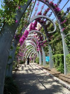 The Grand Arbour is a walk in the South Bank Gardens. It was designed by a Melbourne company and built in The steel tendrils are c. Covered Walkway, Brisbane Queensland, Landscape Structure, Garden Arches, Nature Hd, Garden Paths, Trellis, Botanical Gardens, Facades