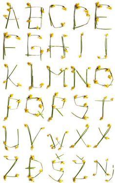 alphabet in flowers